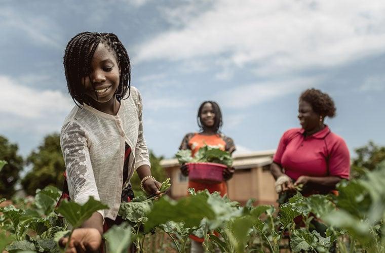 tre kvinnor står i grön odling